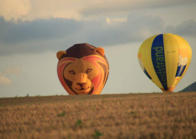 Fotogalerij-Ballonvaarten-Lips-14