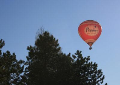 Fotogalerij-Ballonvaarten-Lips-8